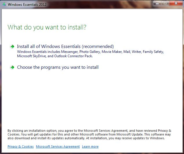 A screenshot of the windows essentials installation screen encountered when installing family safety